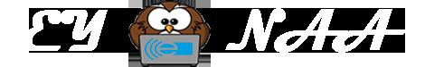 Eyonaa Logo